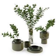 Dekoratives Set mit Pflanzen 3d model