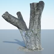 Pień drzewa - 10 3d model