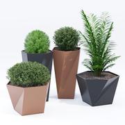 Five pot 3d model