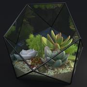 Florarium decoratief 3d model
