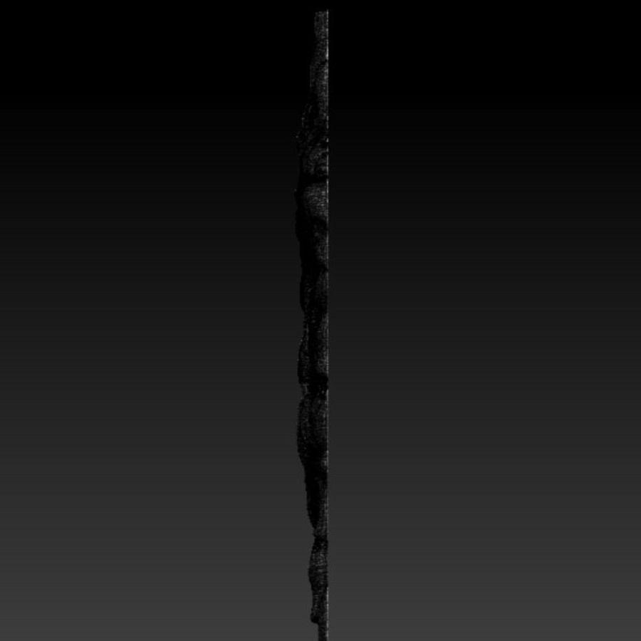 Çılgın köpek kafası bas Rölyef royalty-free 3d model - Preview no. 9