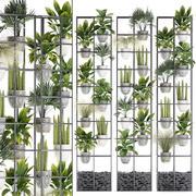 植物コレクション垂直ガーデニング31 3d model