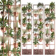植物コレクション垂直ガーデニング32 3d model