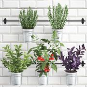 난간에 부엌 용 장식 식물 380 4 3d model