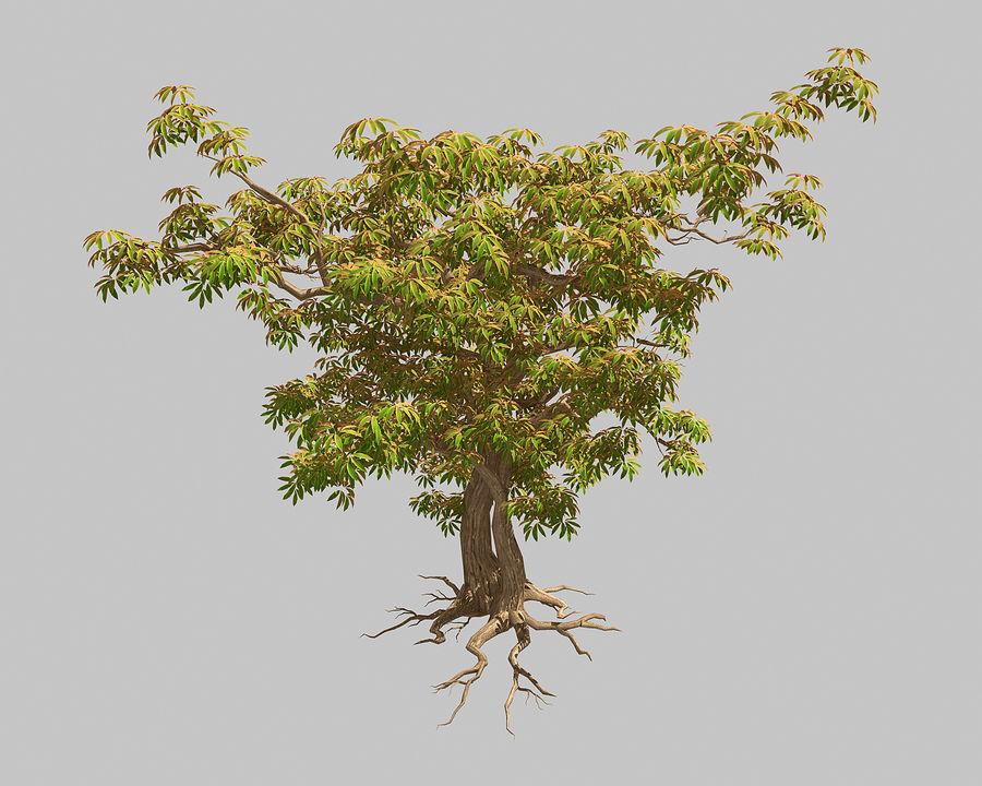 Острые листья - Дерево 32 royalty-free 3d model - Preview no. 1