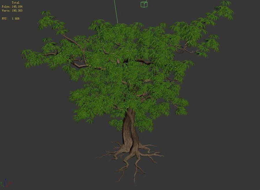 Острые листья - Дерево 32 royalty-free 3d model - Preview no. 4