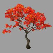 Лес - красное дерево 01 3d model
