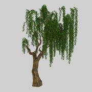 Leśna roślina - wierzba 92 3d model