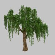Skogsväxt - Willow Tree 93 3d model