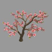 Trees - Peach Trees 23 3d model