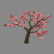 Trees - Peach 24 3d model