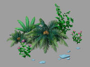 Plant - Dwarf Bushes 24 3d model