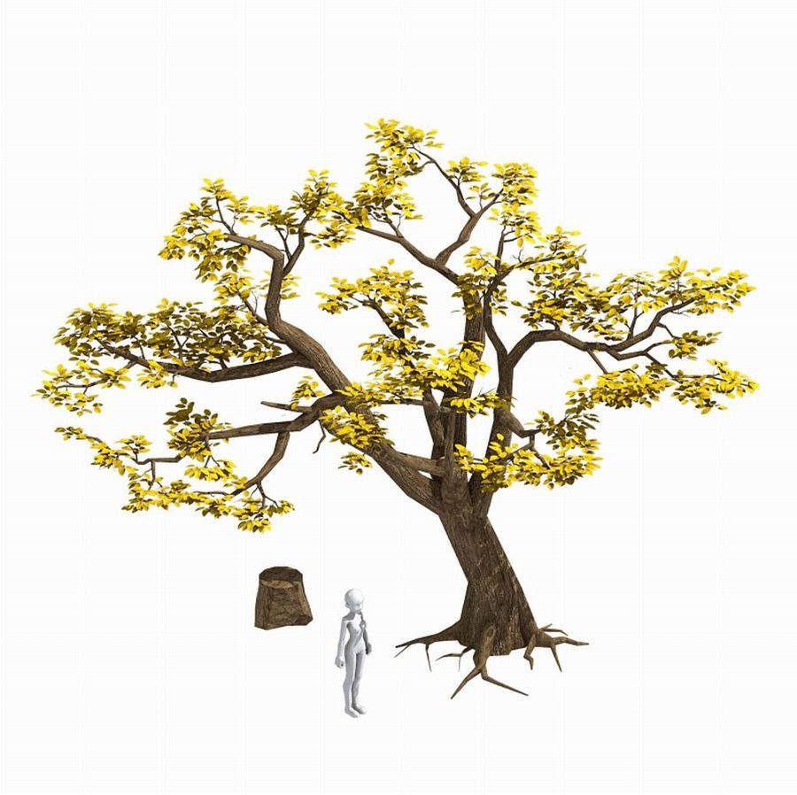 Plants - Trees 326 royalty-free 3d model - Preview no. 2