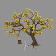植物-木326 3d model