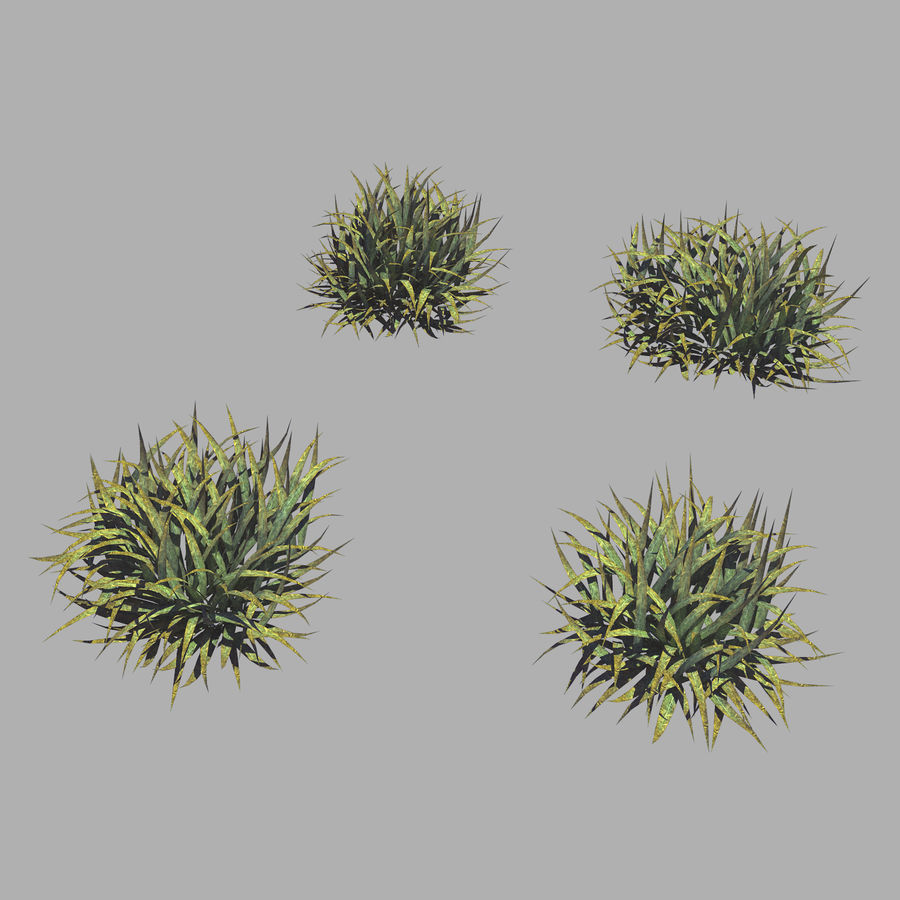 Plantes - Mauvaises herbes 65 royalty-free 3d model - Preview no. 1