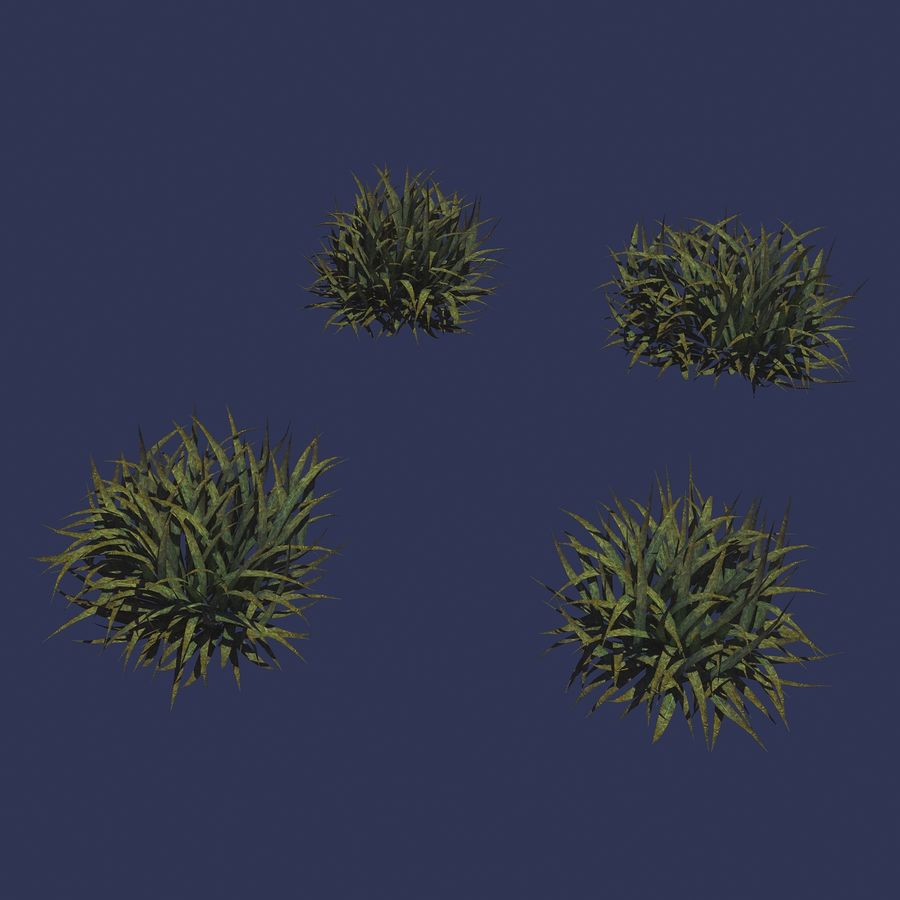 Plantes - Mauvaises herbes 65 royalty-free 3d model - Preview no. 2