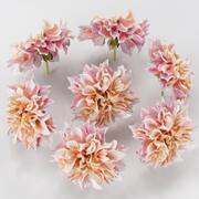 花园大丽花粉红色 3d model