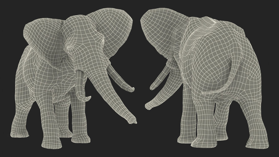 Animerad Elephant Agressive Move Fur Rigged royalty-free 3d model - Preview no. 19