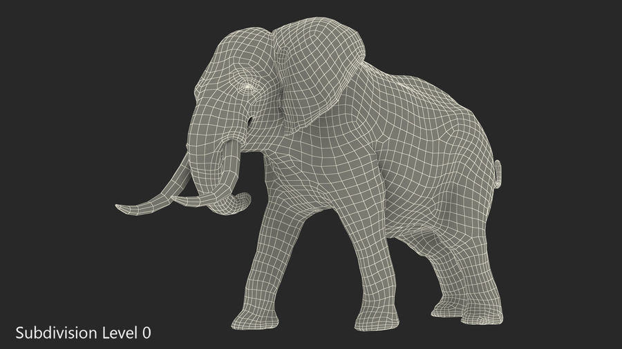 Animerad Elephant Agressive Move Fur Rigged royalty-free 3d model - Preview no. 11