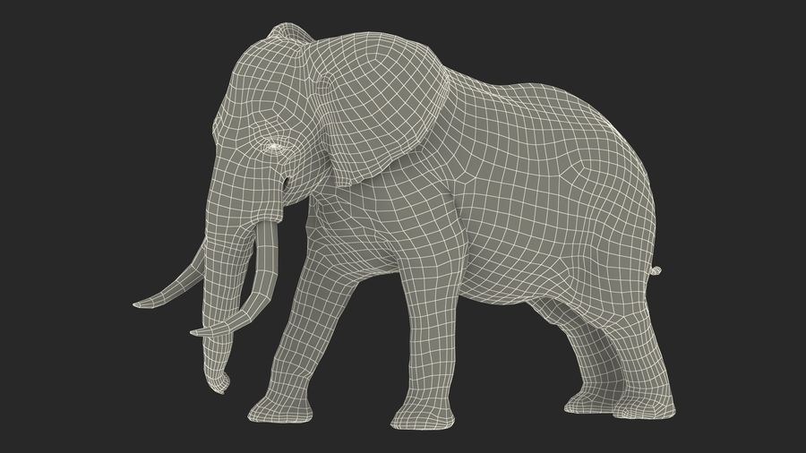 Animerad Elephant Agressive Move Fur Rigged royalty-free 3d model - Preview no. 17