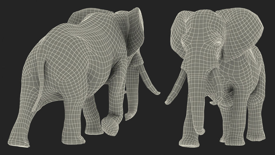 Animated Elephant Walking Fur Rigged royalty-free 3d model - Preview no. 21