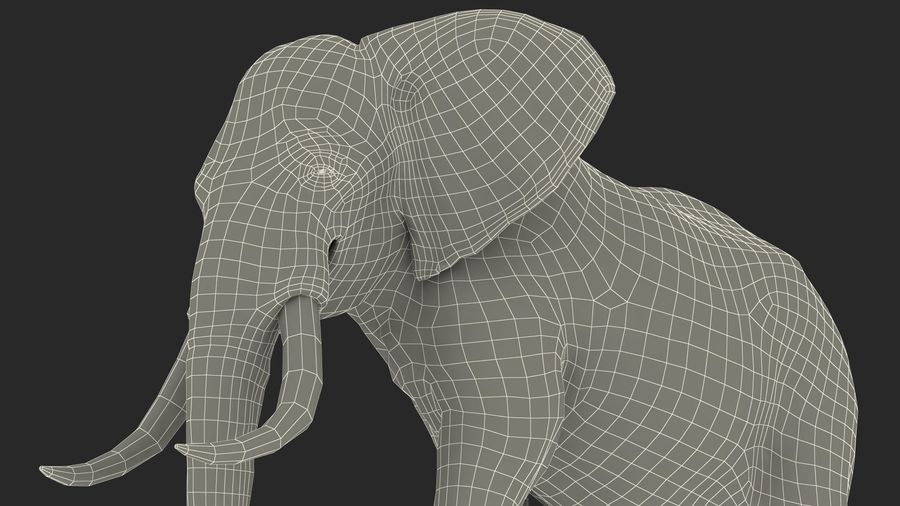 Animated Elephant Walking Fur Rigged royalty-free 3d model - Preview no. 24