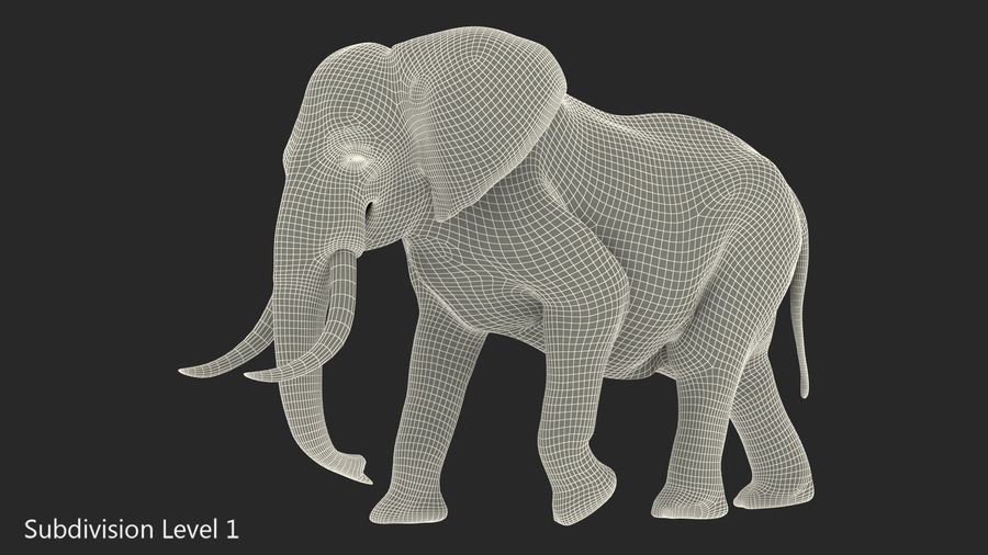 Animated Elephant Walking Fur Rigged royalty-free 3d model - Preview no. 16
