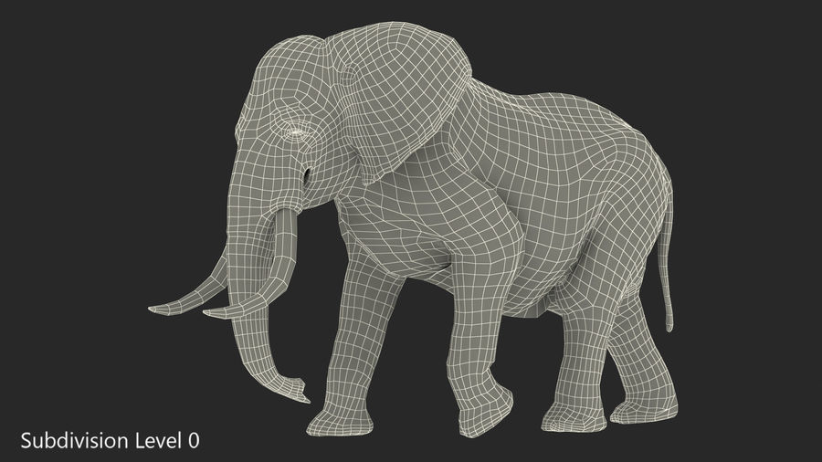Animated Elephant Walking Fur Rigged royalty-free 3d model - Preview no. 15