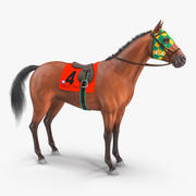 Bay Racing Horse Fur 3d model
