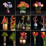 Kolekcja roślin 2 3d model