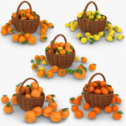 Citrus Basket Collection 3d model