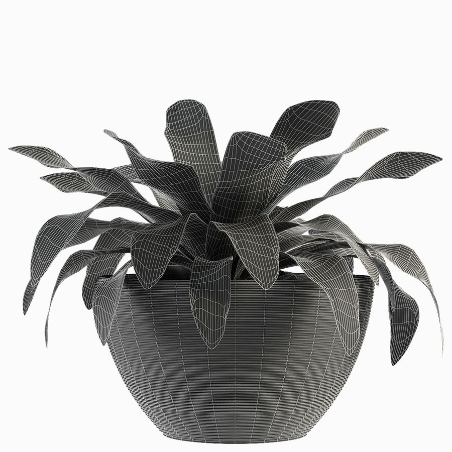Plantes exotiques royalty-free 3d model - Preview no. 2