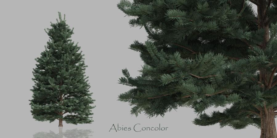 Pacote realista de árvores coníferas royalty-free 3d model - Preview no. 4