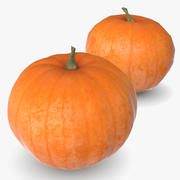 Pumpkin 4 Big High And Low Poly Scaned 3d model