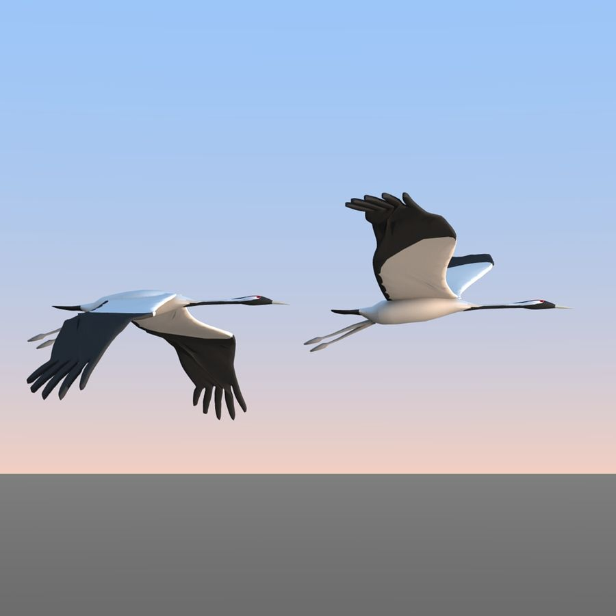 Crane birds royalty-free 3d model - Preview no. 1