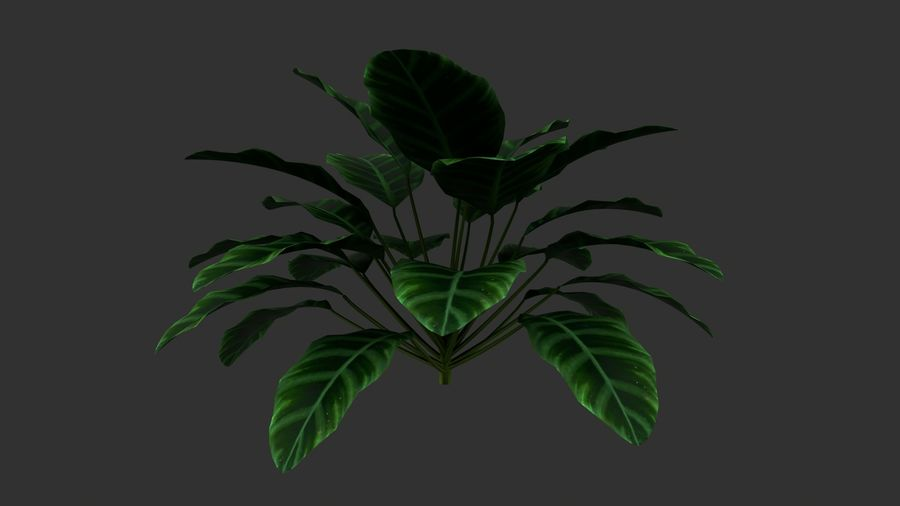TREE-001 Plant royalty-free 3d model - Preview no. 2