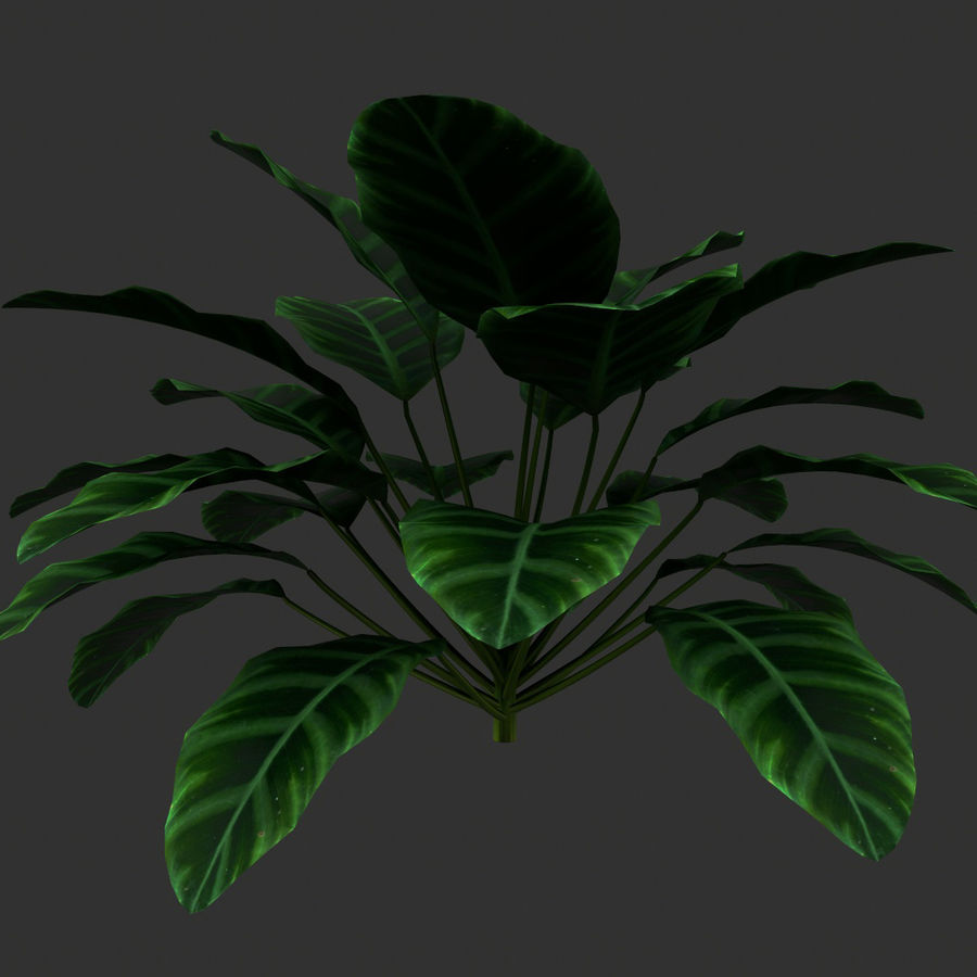 TREE-001 Plant royalty-free 3d model - Preview no. 1