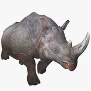 Rhinoceros Animated 3d model