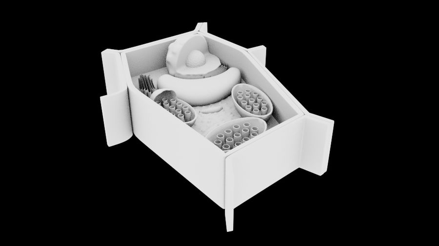 plant cell royalty-free 3d model - Preview no. 2
