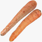 Carrots Collection 04 3d model