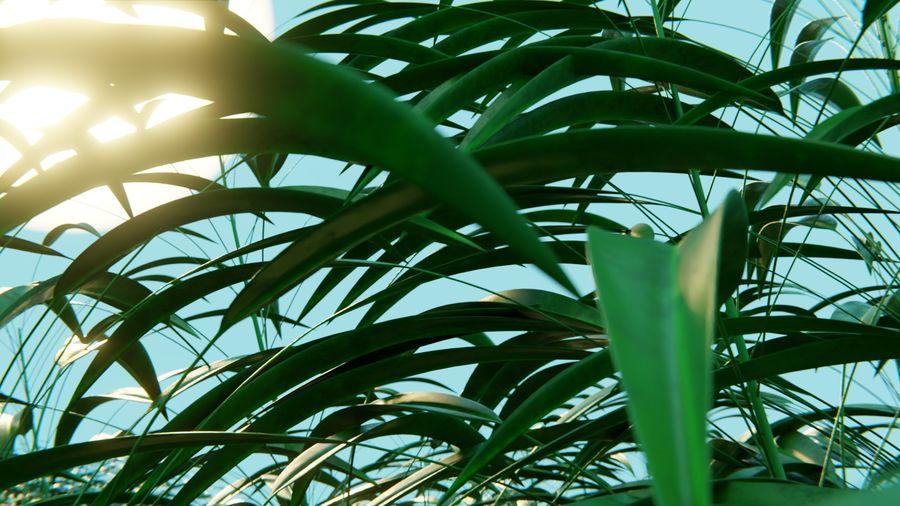 campo de hierba royalty-free modelo 3d - Preview no. 8