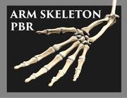 Arm Skeleton PBR 3d model