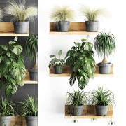 Plant set wall decor vertical garden 48 3d model