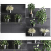 Plant set wall decor vertical garden 49 3d model