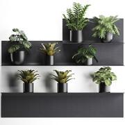 Plant set wall decor vertical garden 50 3d model