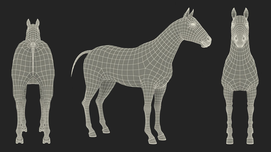 Bay Horse royalty-free 3d model - Preview no. 24