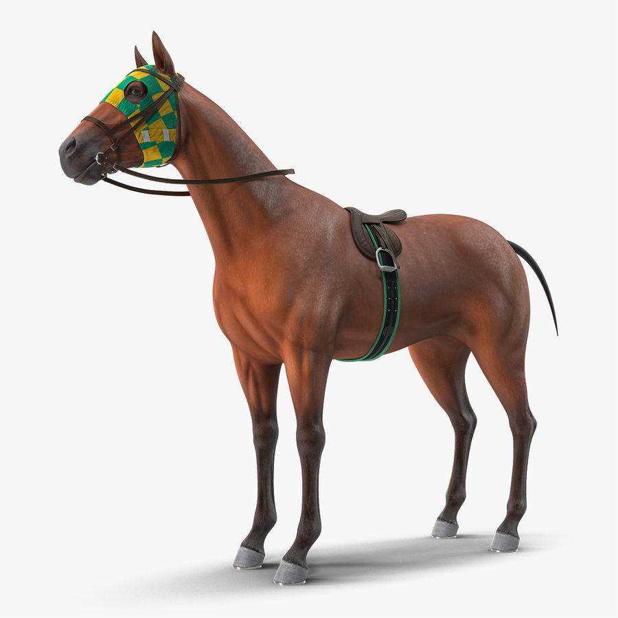 Bay Racehorse royalty-free 3d model - Preview no. 1