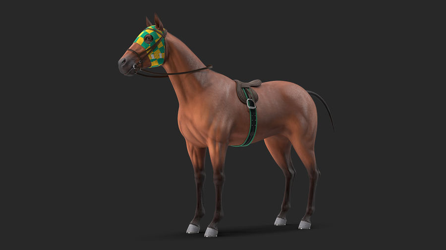 Bay Racehorse royalty-free 3d model - Preview no. 2