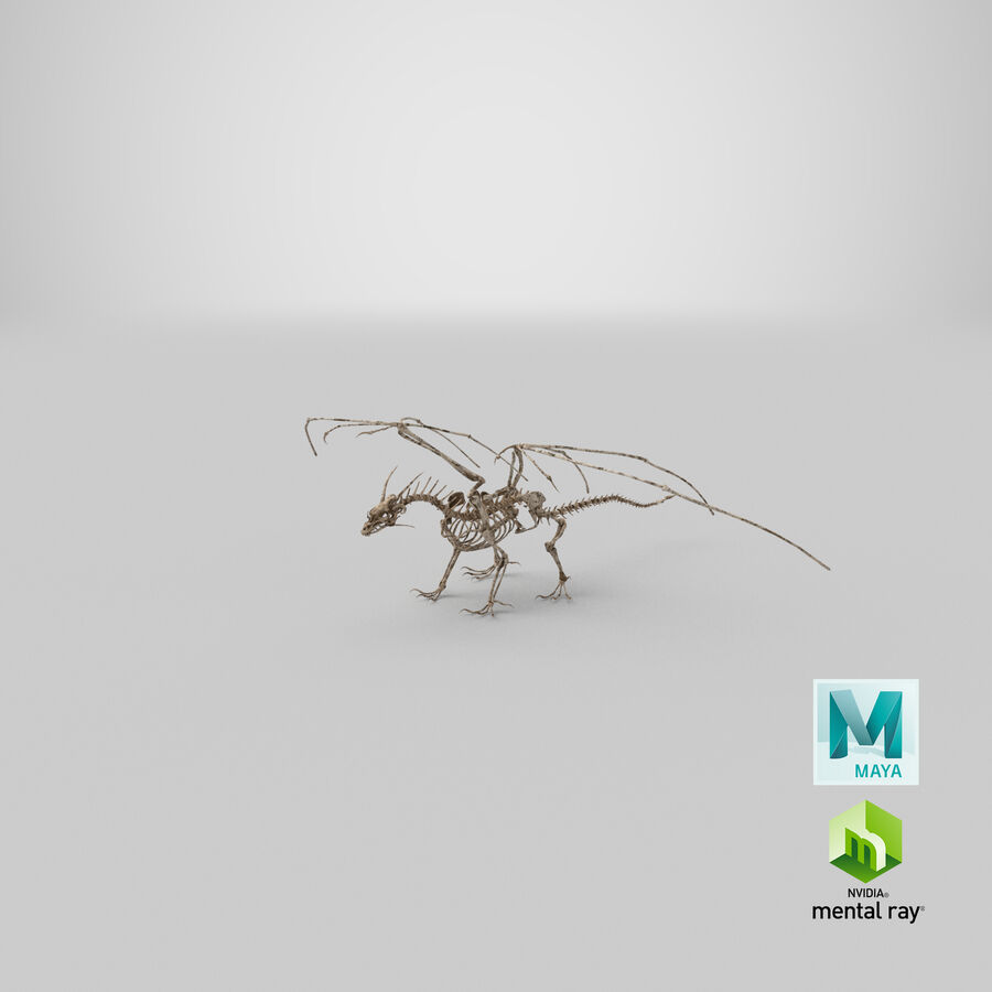 Bone Dragon royalty-free 3d model - Preview no. 36