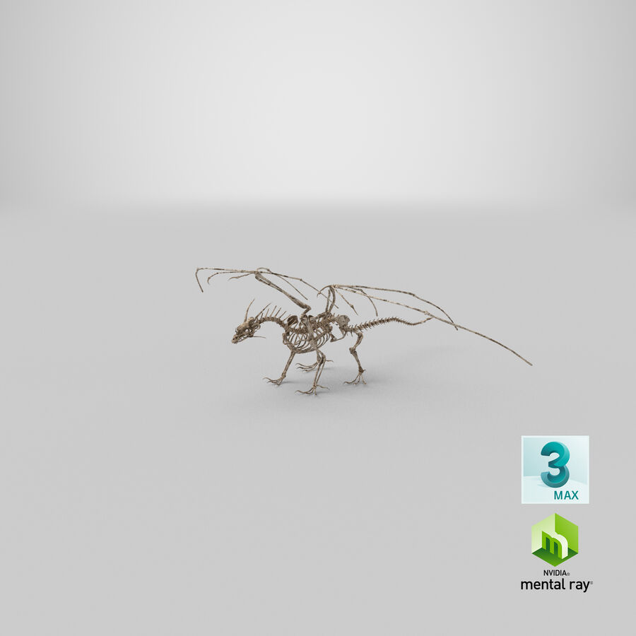 Bone Dragon royalty-free 3d model - Preview no. 33